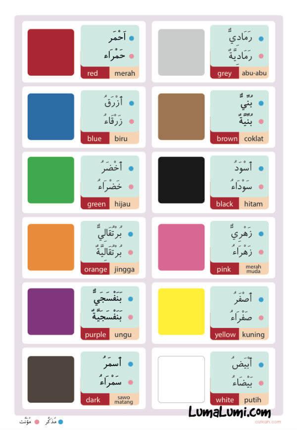 belajar mengenal warna untuk anak